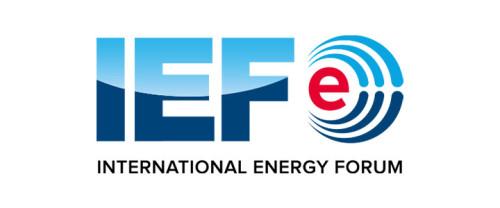 Отчет Международного энергетического форума